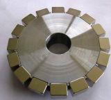 Il rotore elettrico ha legato con il magnete del neodimio