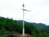 600W Voll Permanet Magnetic Wind Turbine