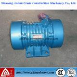 Motore eccentrico elettrico di vibrazione di CA di alta qualità