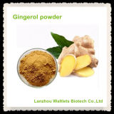 Polvo natural de Gingerol del extracto del jengibre de la alta calidad