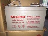 batterie profonde 100ah de la batterie AGM d'UPS de batterie d'accumulateurs de gel du cycle 12V