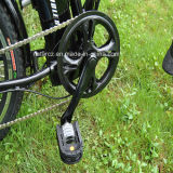 대중적인 20 ' 아이를 위한 소형 폴딩 전기 자전거