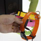 Colar cobrando de piscamento ajustável do USB do nylon claro da noite do diodo emissor de luz do cão de animal de estimação da segurança