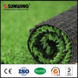 Het openlucht Milieuvriendelijke Gras van de Decoratie van de Tuin