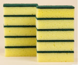 Очистьте продукты для домочадца, очищая губку