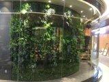 녹색 벽 구 Wall007689220091의 고품질 인공적인 플랜트 그리고 꽃