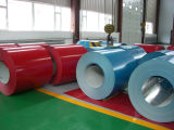 Prepintada (PPGI) galvanizado bobina de acero recubierto de color Coil