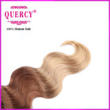 新しいArrival HighqualityおよびWholesale Price 3 Tone Omber Color Body Wave Hair、100%年のMalaysian Hair
