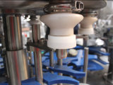 Terminar la planta de empaquetado de relleno embotelladoa del agua