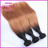 Утков волос цвета Omber тона выдвижения 2 волос Omber волосы малайзийских дешевые малайзийские прямые