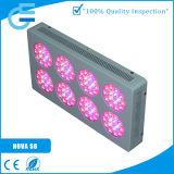 高いPower 120X3w LED Indoor Grow Lights