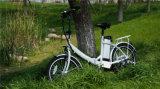 Alta calidad y 250W barato plegables la bicicleta eléctrica