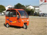 卸売によって人を配置される電気の三輪車の三輪車