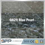 Pearl blu Granite Floor Tile per Flooring, Wall, Bathroom