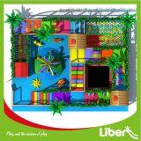 Liben использовало крытое оборудование спортивной площадки для детей