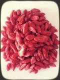 中国の高品質によって乾燥されるGojiの果実の製造者(Wolfberry)