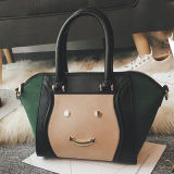 leather Handbag Sy7913 미소 손 부대 여자 동향 숙녀