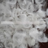 Großverkauf gewaschene weiße Gans-Feder-Lieferanten