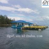 Jaula comercial de la piscicultura de la Tilapia adulta de Marketsize del HDPE