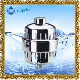 Фильтр воды ливня для извлекает хлор