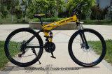 熱い販売の折るマウンテンバイク(ly35)
