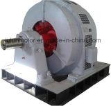 Großformatige Hochspannungswundläufer-Rutschring-3-phasige asynchrone Bewegungsserie Yr1250-100/1430-1250kw