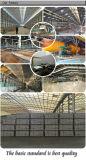 Kijkt het Zwarte Zandsteen van de Vloer van Foshan 600X600 van de keramiek de Tegel van het Porselein (LF66057J)