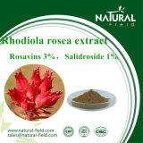 Polvere Rosavin dell'estratto di Rhodiola Rosea