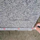 Lastra di Gangsaw del granito G603 con la garanzia di qualità