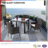 Garten-Patio-Speisetisch und Stühle für im Freienmöbel (TG-930)