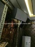 RM12 de Spreker van KTV de Audio van 12 Duim