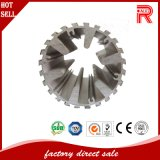 Heiß-Verkaufs- Aluminium-/Aluminiumstrangpresßling-Profile für Vorhang-Profil (RA-010)