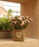 (BC-SF1002)普及したハンドメイドの自然なわらの花のバスケット