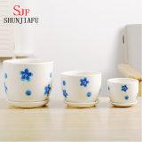 Planteurs succulents en céramique de type moderne, Flowerpots ronds, ensemble de 3