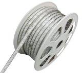 Esterno impermeabilizzare la striscia flessibile di 60LED/M 5050 il RGB LED