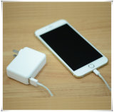 45W Single Port USB Mini haut-Efficency Power Adapter Wall Charger