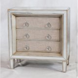 Mobilia rispecchiata di legno della riproduzione per l'accumulazione del salone