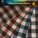 Sofortige Waren, Polyester-Gingham-Check, 10 Farben, damit Sie wählen (X031-34)