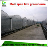 Stärkstes galvanisiertes Stahlkonstruktion Plastik-Film Gewächshaus