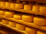 柔らかいチーズ生産ラインかチーズ作成機械または柔らかいチーズ装置ライン