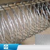 電流を通された有刺鉄線/PVCの上塗を施してある有刺鉄線またはトゲワイヤー囲うこと(工場)