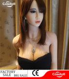 De Producten van Adam en van de Vooravond catalogiseren Doll van het Geslacht van de Nieuwigheden van het Speelgoed Mannelijke voor Vrouwen