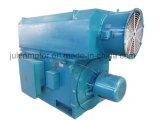 Motor asíncrono trifásico de alto voltaje grande/de tamaño mediano Yrkk6301-8-710kw del anillo colectando del rotor de herida