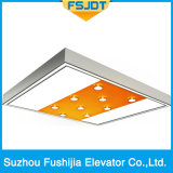 Ti-Покрынный подъем лифта виллы Fushijia нержавеющей стали волосяного покрова