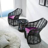Sofà esterno del doppio della mobilia del rattan ambientale del PE del livello superiore per il salone