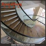 Modèle spiralé moderne d'escalier en verre et en bois pour l'intérieur (SJ-3003)