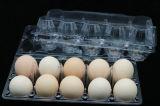 Ясности волдыря Clamshell шлицы упаковщика отверстий контейнера 6 яичка подноса яичка устранимой пластичные