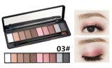 Palet 10 van de Make-up van het oog de Oogschaduw van de Steen van de Flikkering van Kleuren met Borstel Es0316 wordt geplaatst die