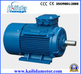 Induction trifásico Electrical Motor para Water Pump