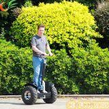 ApprovedのセリウムFCC RoHSとのKidsのためのスクーター
